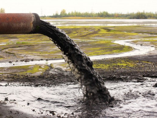 Biohazards of sewage sludge